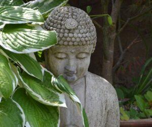 buddha med hosta
